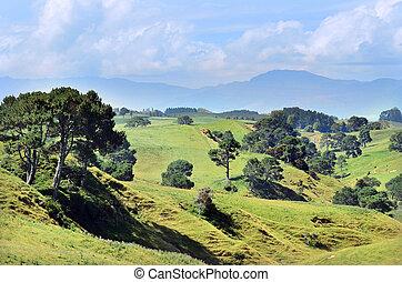 Hobbiton Movie Set and Farm - The landscape of the Hobbiton...