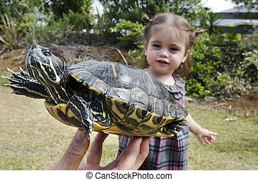 Wildlif and Animals -Sea Turtle - A little girl touch a...