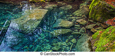 Blausee, Switzerland - The crystal clear water at Blausee,...