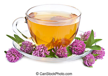 herbal tea and clover flowers isolated