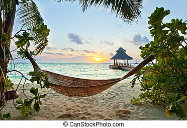 Hammock and sunset - Empty hammock in the tropical beach in...
