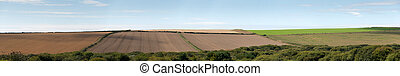 Overview in Cornwall - Agriculture in the fields of Port...