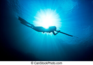 Spearfishing silhouette - A beautiful days spearfishing on...