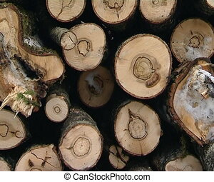 stack tree trunks logs