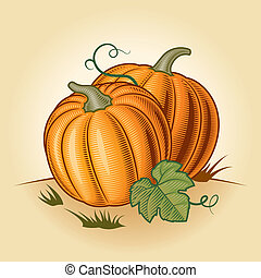 Retro pumpkins in woodcut style. Vector illustration.