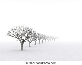 trees in misty haze in a gloomy winter day