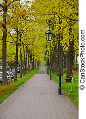 The alley with trees and lanterns (lamps) in the park near Men Monastery on a Frauenberg in Fulda, Hessen, Germany