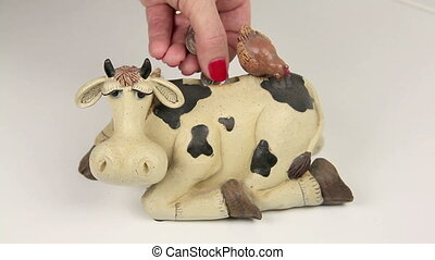 Money Cow - Dropping silver coins into a cash cow money box....