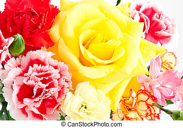 Rose and carnation - Close up of one yellow rose and various...