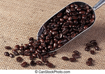 Coffee beans in a scoop