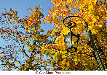 Lamp stand, yellow maple forest with blue sky in Fulda,...