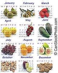 Calendar year 2013 with seasonal fruits