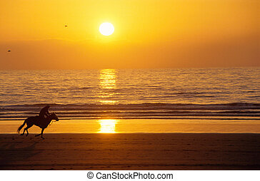 Galloping horse and rider at sunset on the beach -...