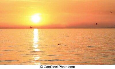 Sea on sunset  - Marmara sea on sunset