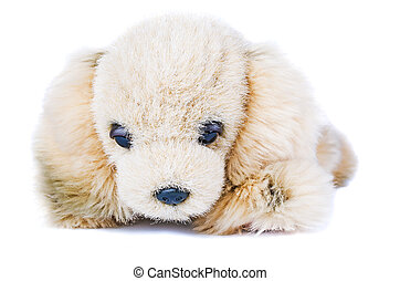 Soft plush toy dog isolated
