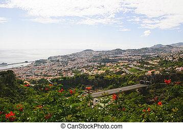 Funchal, Madeira - Funchal from botanic garden, Madeira,...