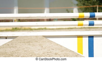 show jumping - equestrian show jumping