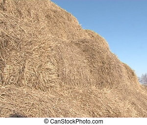 farm animal bedding straw - rolled straw bales cones stack...