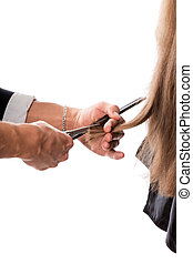 Hairdresser cutting the hair, isolated on white