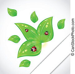 Leaves with ladybugs sticking out of the cut paper