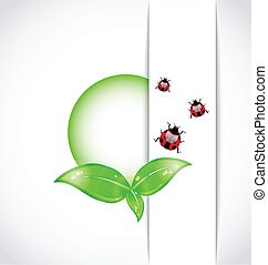 ecological background with bubble, green leaves, ladybugs