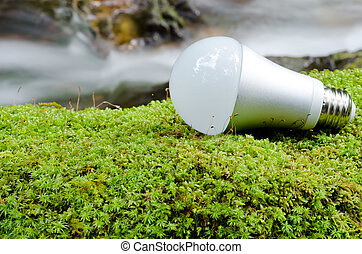 LED light bulb on the green moss near the brook