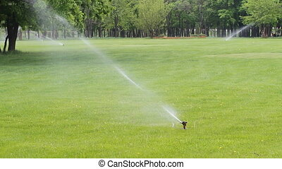Water sprinkler in the park