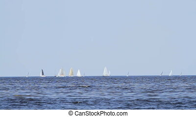 sailing yachts on the sea