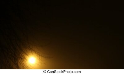 Street with fog in the night: traffic lights and cars.