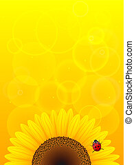Sunflower and ladybird on yellow background.