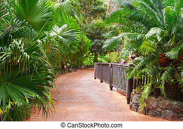 Paved the road of red tropical trees and flowers