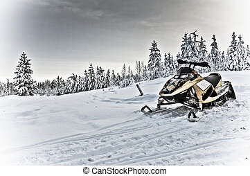 Snowmobile in winterlandscape