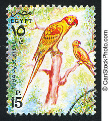 Rose-ringed parrot - EGYPT - CIRCA 1994: stamp printed by...