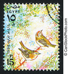 Egyptian swallow - EGYPT - CIRCA 1994: stamp printed by...
