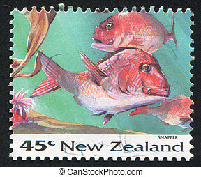 Snapper - NEW ZEALAND - CIRCA 1993: stamp printed by New...