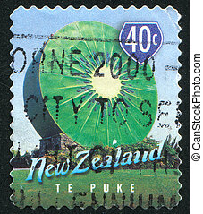 Kiwifruit - NEW ZEALAND - CIRCA 1998: stamp printed by New...
