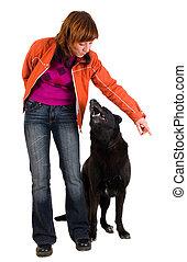 訓練, 女, 犬