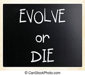 quot;Evolve or Diequot; handwritten with white chalk on a...