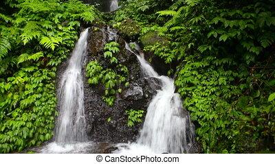 Falls in jungle on island Bali