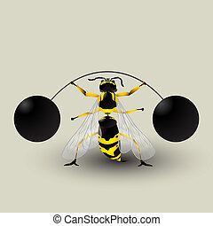 Loosing weight - Conceptual graphic with a german wasp...