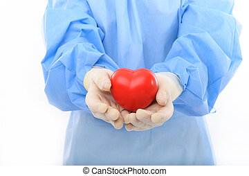 sterile doctor holding heart - sterile doctor or nurse in...