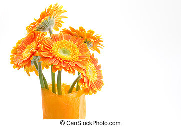 African daisy bouquet - Standing orange african daisy...