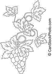 silhouette, branches, Raisins