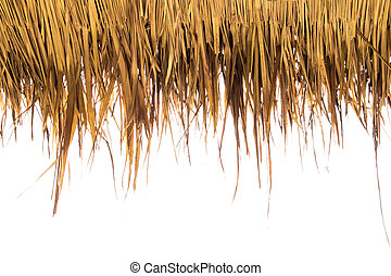 Dry yellow grass on white background