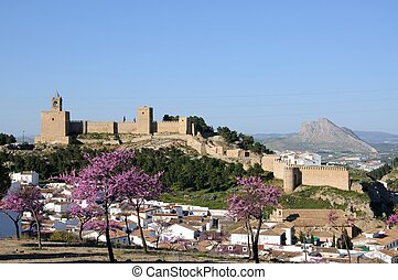 Castle and houses, Antequera - Castle fortress with pink...