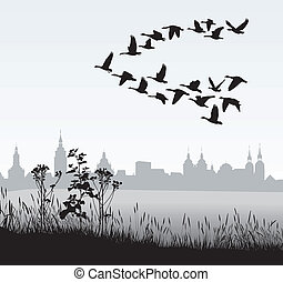 Migrating wild geese of the country - vector illustration of...