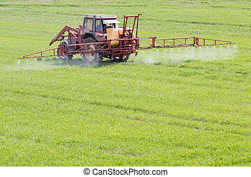 Agriculture in spring - A red old tractor fertilizes a green...
