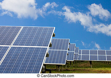 Field with solar cells - Field with many solar cells in...