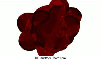 blood and plasma - blood plasma