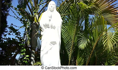 Mother Mary surounded by plan tree leaves.